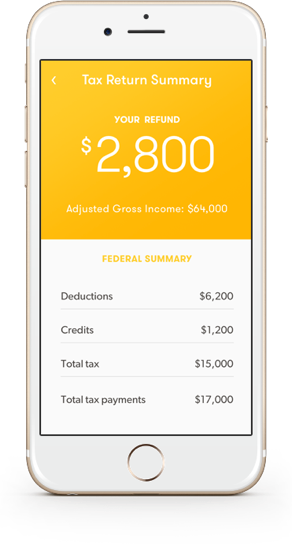 TaxChat summary screen